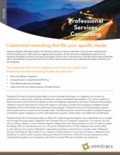 thumbnail image for professional services consulting brochure